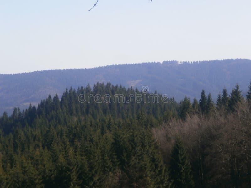 взгляд наклона лыжи панорамы гор caucasus dombay стоковая фотография rf