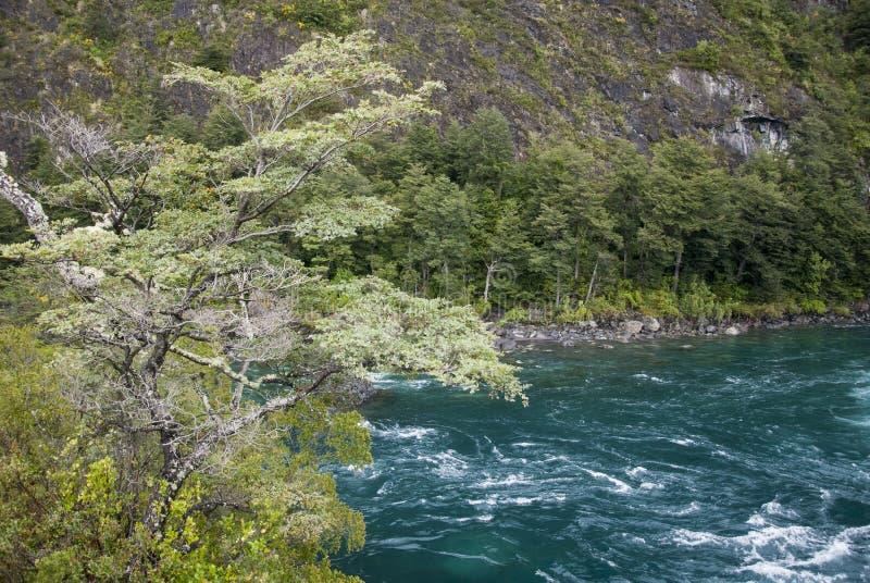 Взгляд национального парка розовые Vicente Perez - Чили стоковое изображение rf