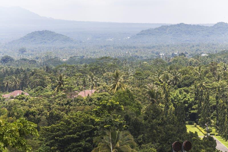 Взгляд на джунглях вокруг виска Borobudur стоковые изображения