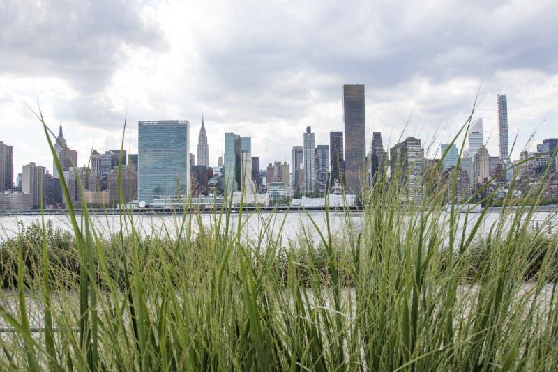 Взгляд на Манхаттане от города в летнем времени, Нью-Йорка Лонг-Айленд, Соединенных Штатов Америки стоковые фотографии rf