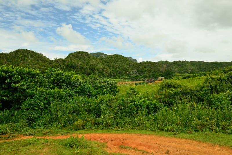 Взгляд на долине Vinales в Кубе стоковые изображения