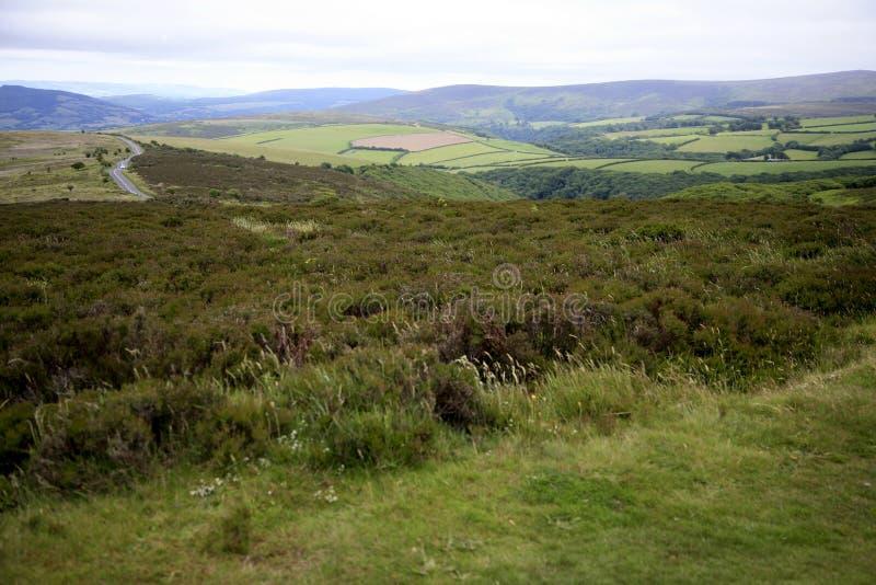 Взгляд над холмом Porlock, Exmoor стоковое изображение rf