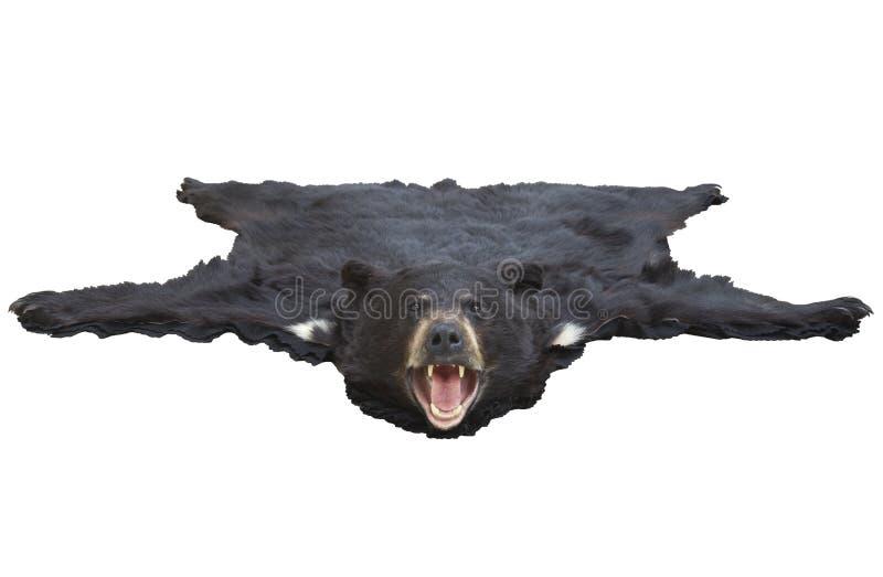 Взгляд низкого угла половика bearskin изолированного на белизне стоковое изображение