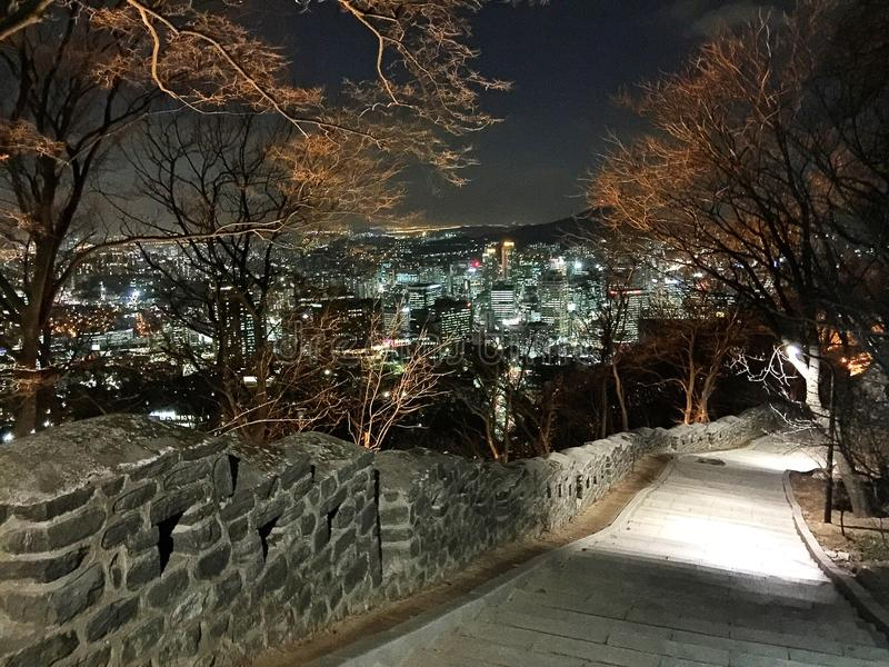 Взгляд ночи Кореи стоковое изображение rf