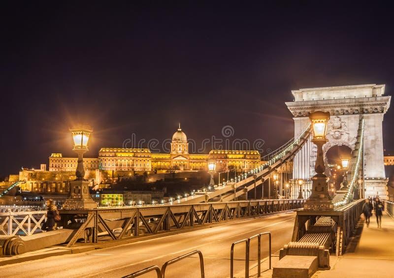 Взгляд ночи моста Szechenyi цепного над Дунаем и королевским дворцом в Будапеште стоковое изображение