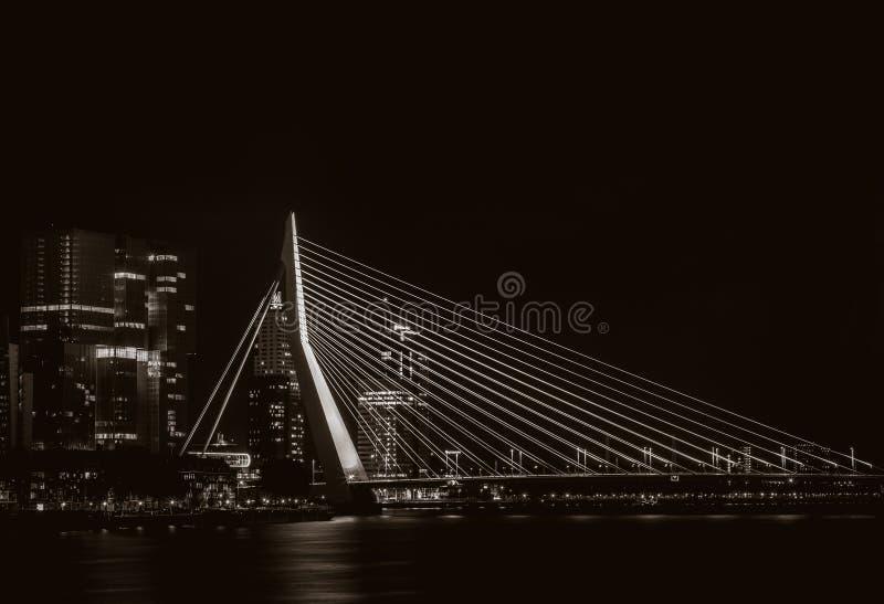 Взгляд ночи на мосте Erasmus в Роттердаме, Нидерландах стоковые фотографии rf
