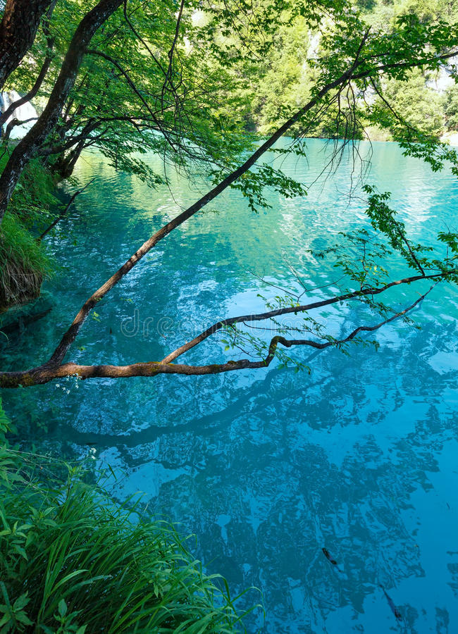 Озеро лет azure limpid прозрачное (Plitvice, Хорватия) стоковая фотография