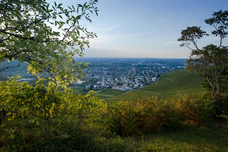 Взгляд от виноградника на деревне Beutelsbach стоковое изображение
