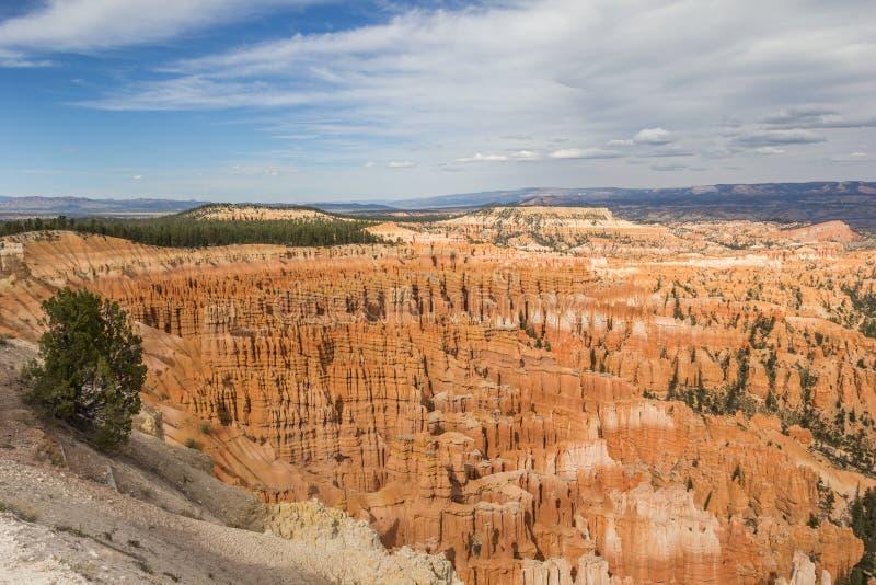 Взгляд от пункта воодушевленности в каньоне Bryce стоковые фотографии rf