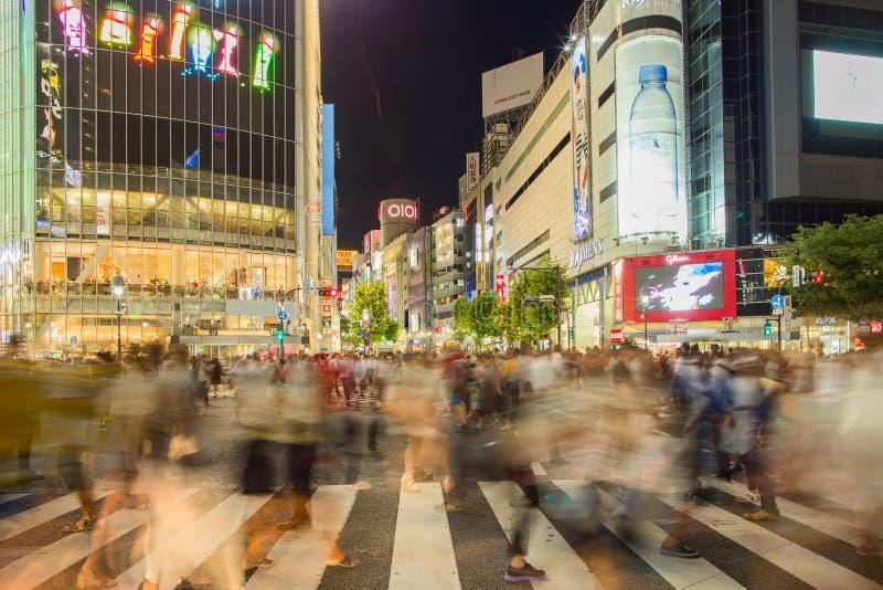 Взгляд панорамы токио стоковые фотографии rf