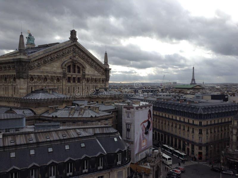 Взгляд Парижа на пасмурный день стоковое изображение