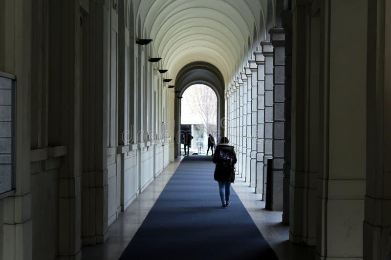 Взгляд перспективы галереи колоннады стоковые изображения rf