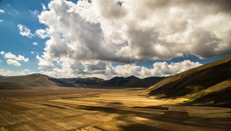 Взгляд полей Италии стоковая фотография