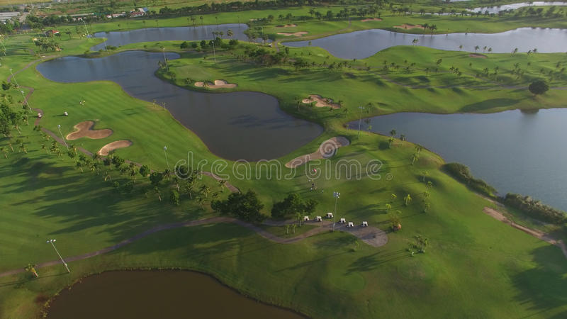 Взгляд поля для гольфа выровнянного деревом стоковая фотография