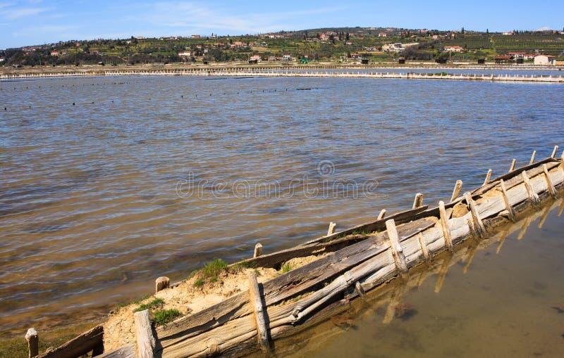 Взгляд прудов испарения соли в Secovlje стоковая фотография rf