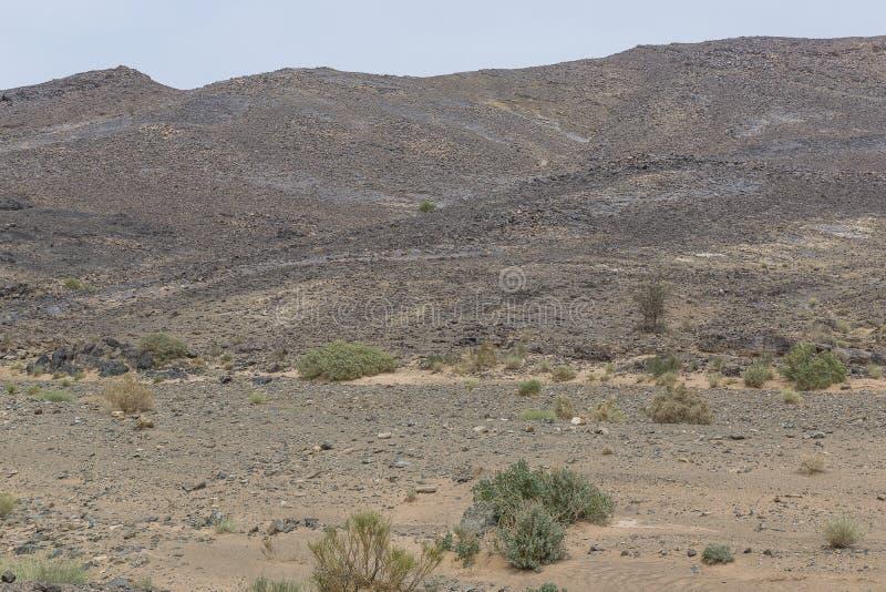 Взгляд пустынь и гор стоковые изображения rf