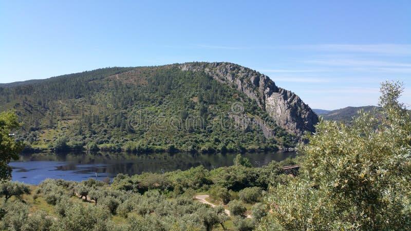 Взгляд реки стоковые изображения
