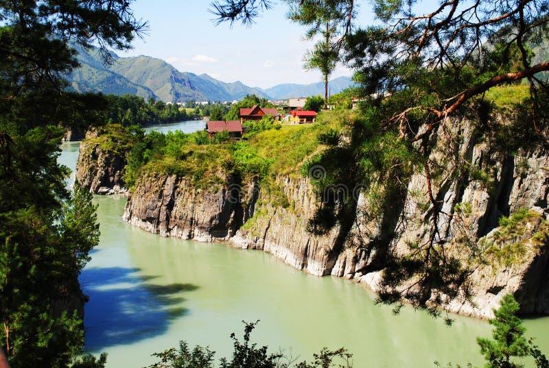 Взгляд реки Katun стоковая фотография rf