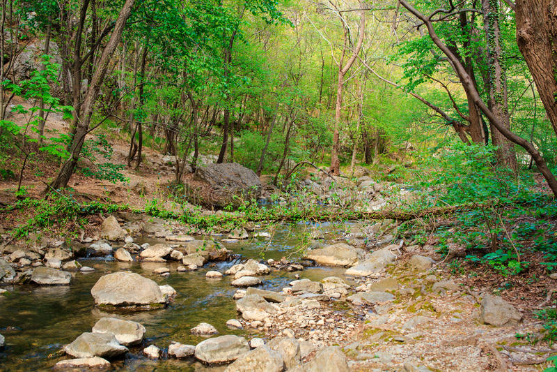 Взгляд реки Rosandra стоковые фотографии rf
