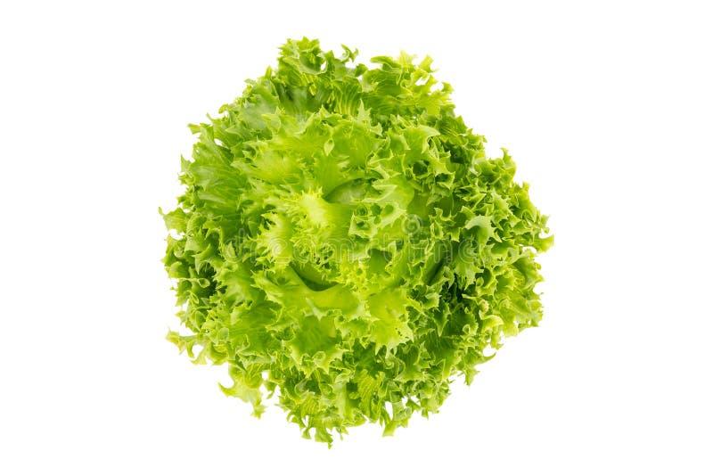 Взгляд сверху листьев салата, айсберг Frillice стоковые изображения