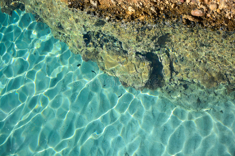 Взгляд сверху моря и рыб стоковые изображения