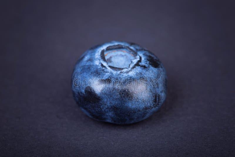 Взгляд сверху сочной, целительной и вкусной голубики на темной предпосылке Свежий одиночный плодоовощ голубики, конец-вверх Плодо стоковое изображение rf