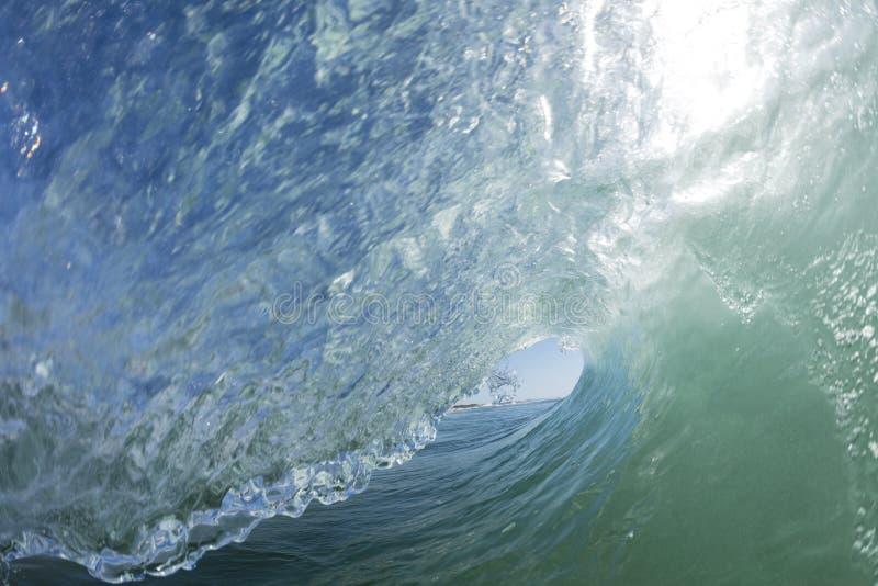 Взгляд серферов стоковая фотография
