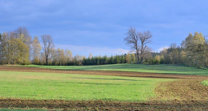 Взгляд сельской местности весны, южной Богемии стоковые изображения