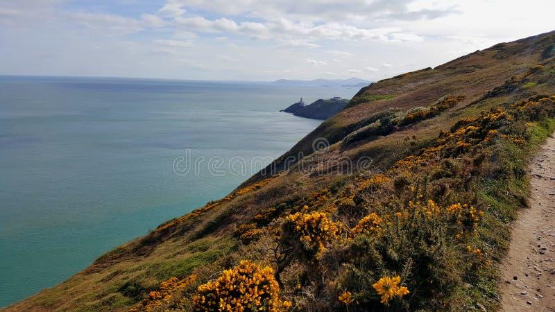 Взгляд скал с маяком в предпосылке стоковая фотография rf