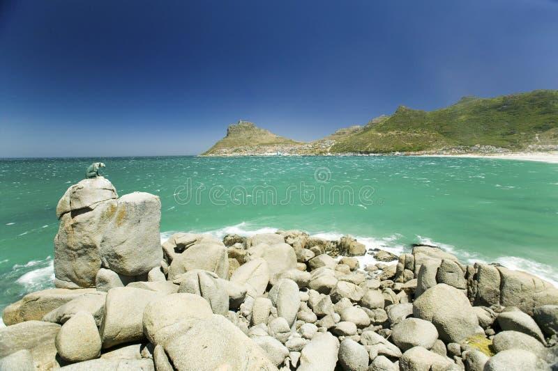 Взгляд скульптуры льва обозревая Атлантического океана и залива Hout, южного полуострова накидки, вне Кейптауна, Южная Африка стоковое изображение rf