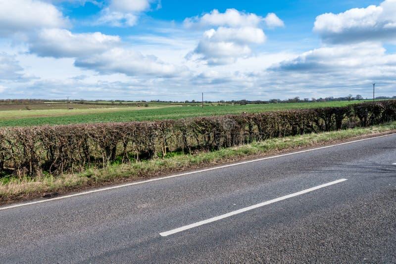 Взгляд солнечного дня пустой проселочной дороги Великобритании стоковое фото