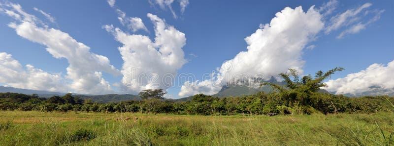 Взгляд травы, горы и облачного неба Chiangmai Таиланда стоковая фотография