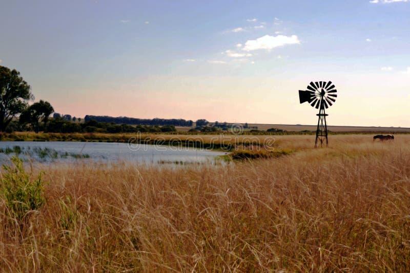 Взгляд фермы с голубыми небесами стоковая фотография rf