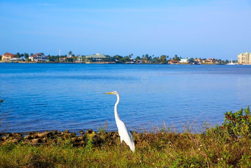 Взгляд Флорида США острова Неаполь Флориды Marco стоковые изображения