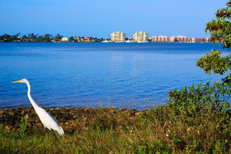 Взгляд Флорида США острова Неаполь Флориды Marco стоковое фото