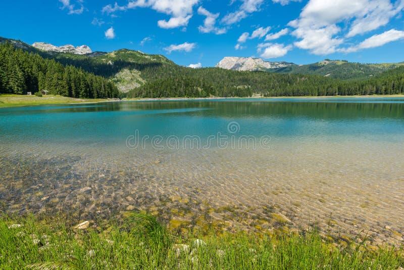 Взгляд черного озера стоковая фотография rf