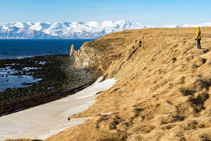 Взгляды свода моря исландские стоковое изображение rf