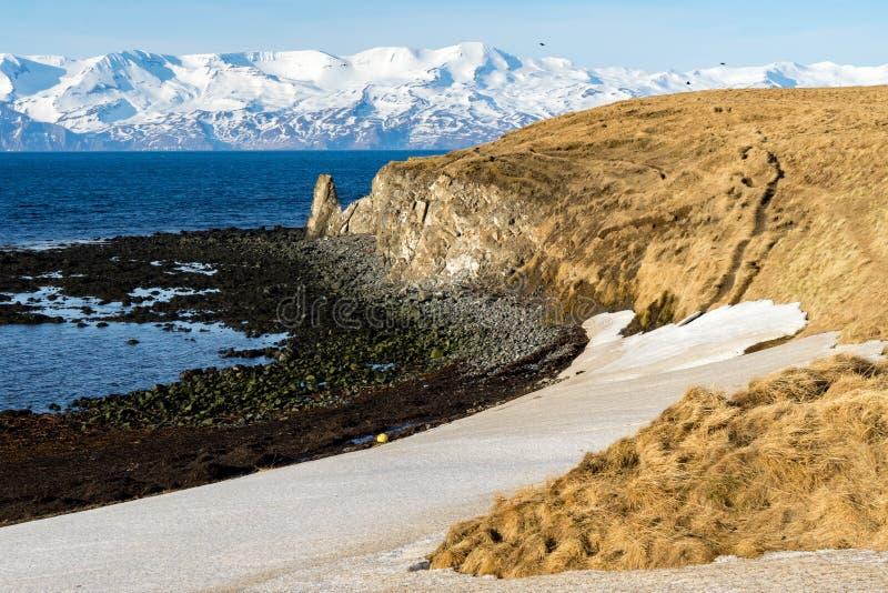 Взгляды свода моря исландские стоковая фотография