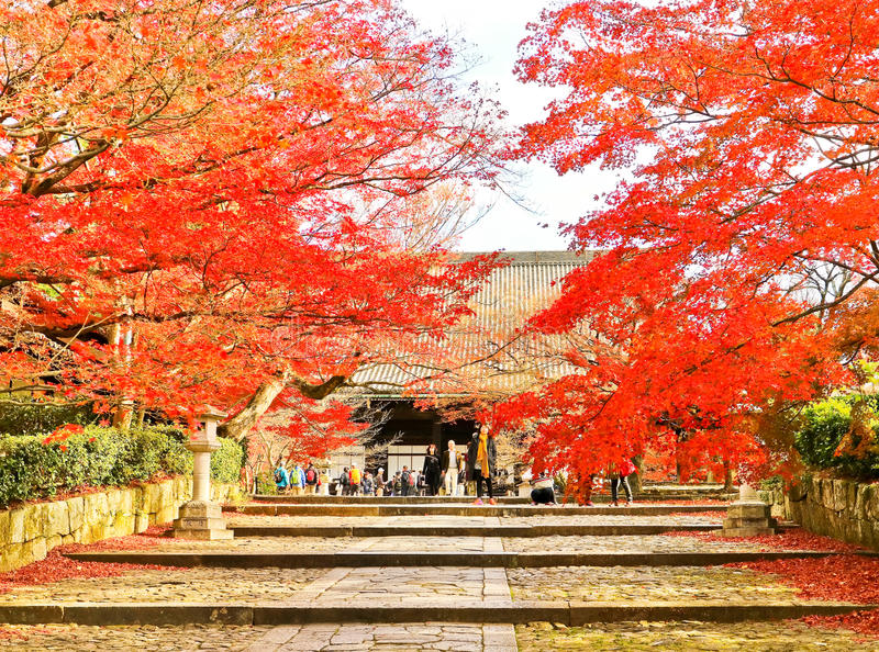Взгляд японского виска в осени в Киото, Японии стоковая фотография rf