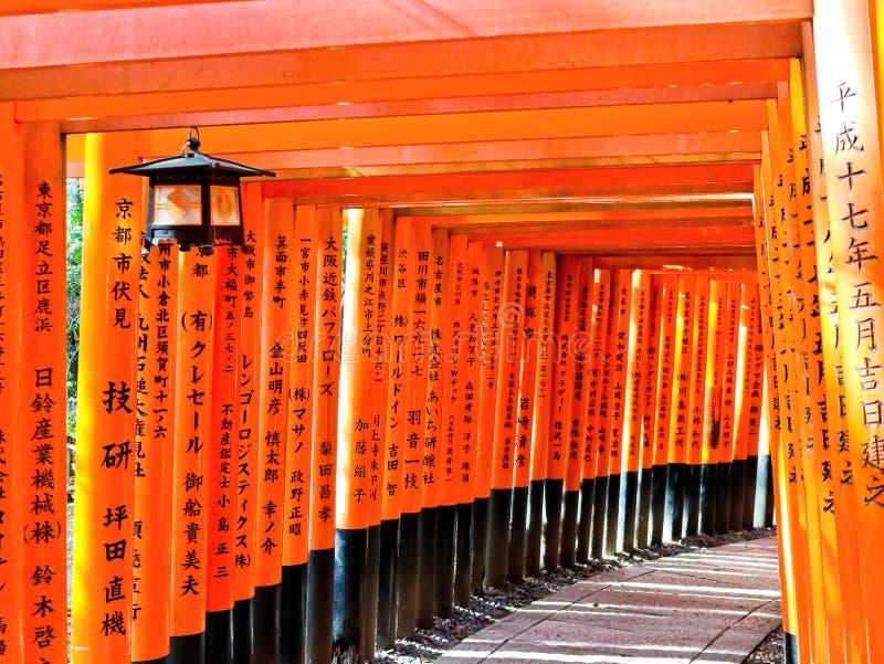 Взгляд японского пути torii в Киото, Японии стоковые фотографии rf
