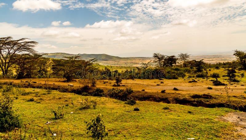 Взгляд Masai Mara стоковое фото