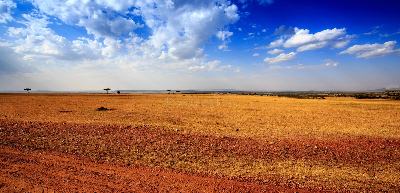 Взгляд Masai Mara (Kenia) стоковые изображения rf