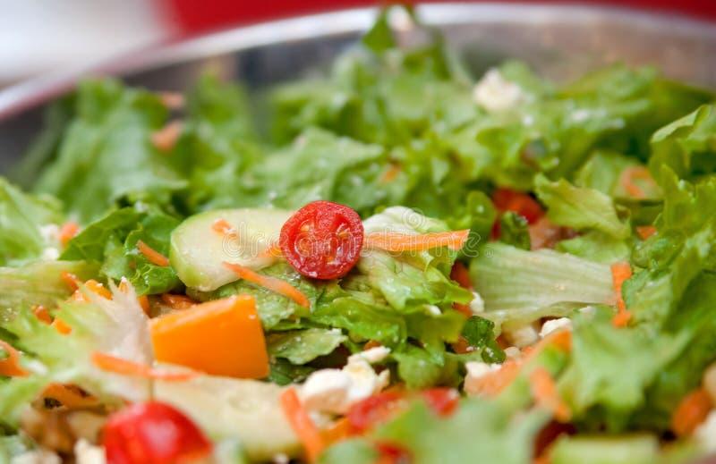 взметнутый салат стоковые фотографии rf