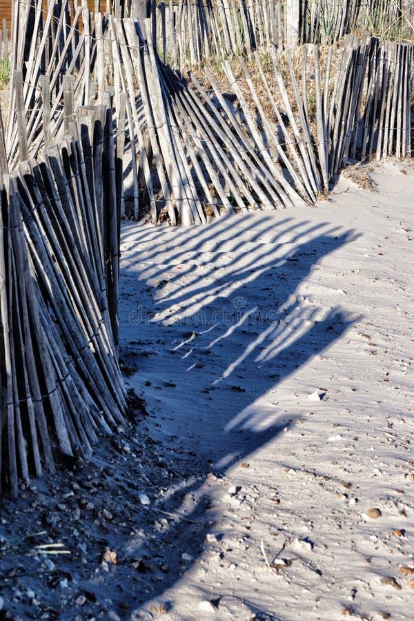 Взморье выдержало деревянные загородки на песчаном пляже стоковое изображение