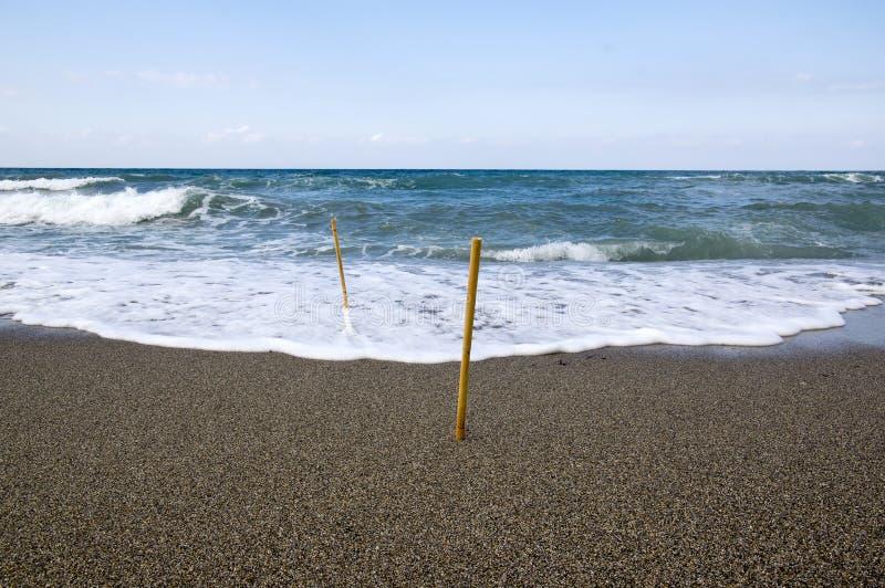 Взморье на острове Крита, песчаном пляже с бамбуковыми поляками вставляет стоковые изображения