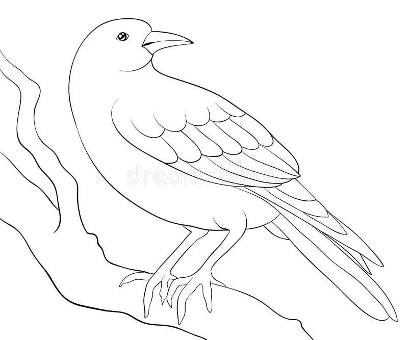 Взрослая книжка-раскраска, вызывает милую птицу для ослаблять Иллюстрация стиля искусства Дзэн иллюстрация штока