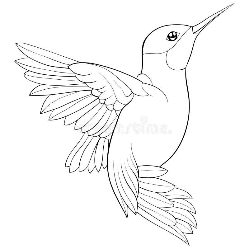 Взрослая книжка-раскраска, вызывает милую птицу для ослаблять Иллюстрация стиля искусства Дзэн бесплатная иллюстрация