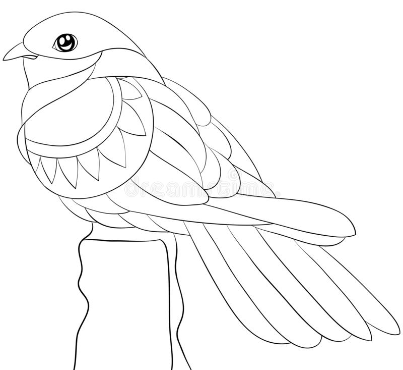 Взрослая книжка-раскраска, вызывает милую птицу для ослаблять Иллюстрация стиля искусства Дзэн иллюстрация вектора