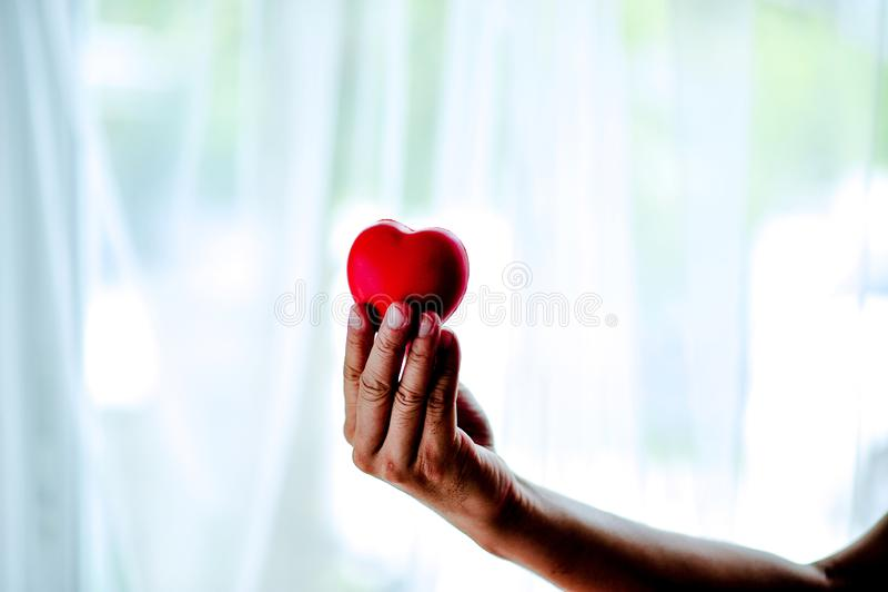 Взрослая чернь держит красные сердце, здравоохранение, пожертвование и семью i стоковое фото rf