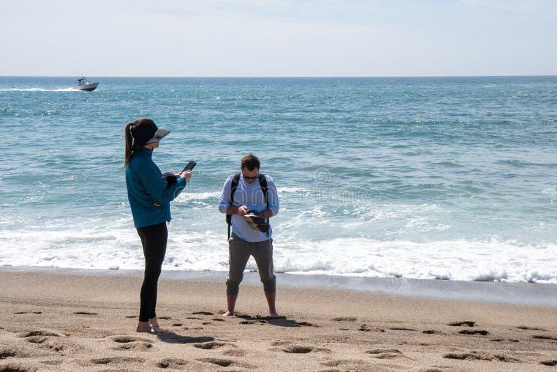 Взрослые туристы суетятся и играются с их телефонами пока наслаждающс стоковое фото rf